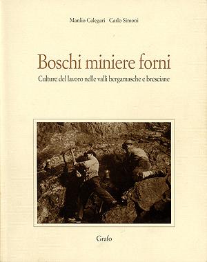 boschiminierefor